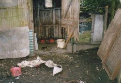 The shed where Shep lived