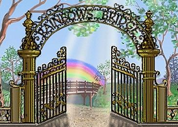 Welcome to Rainbows Bridge