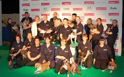 SBT League Team - Crufts 2013