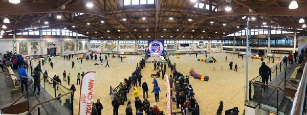 The incredible indoor facility at the venue in Cattolica which hosted most of the senior events as well as a couple of junior and children's events over the 4 days.